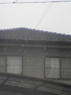 また雪が、、、